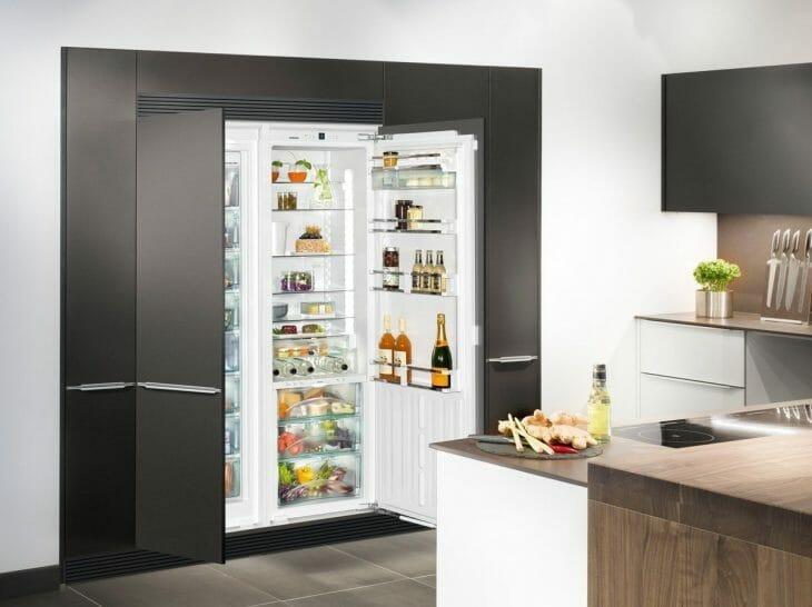 Встроенный в нишу холодильник с распашными дверцами