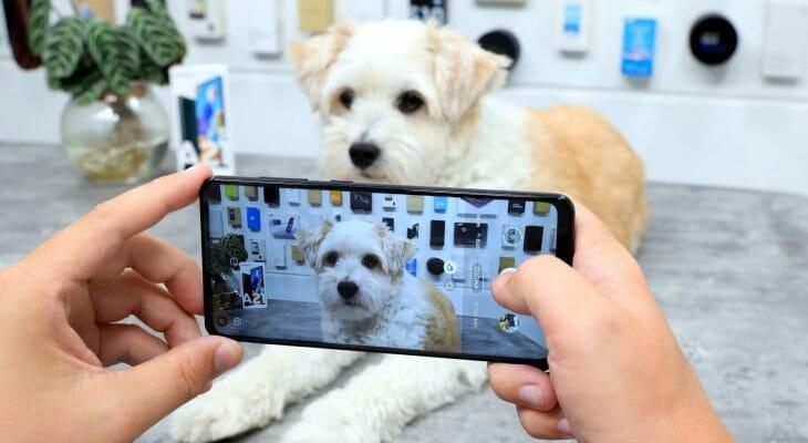 Недорогой смартфон Samsung с хорошей камерой