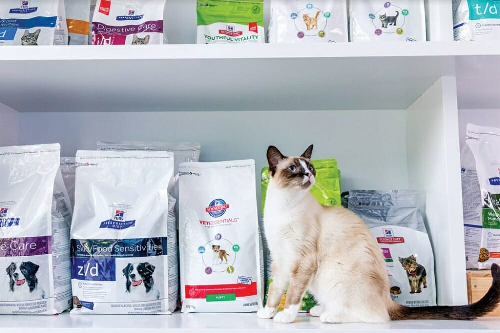 Упаковки с кормом для кошек на прилавке