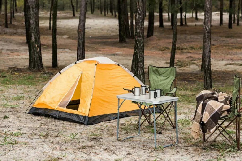 Простая купольная палатка в хвойном лесу